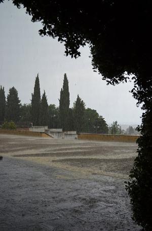 1920-06-Florence_Rain.jpg