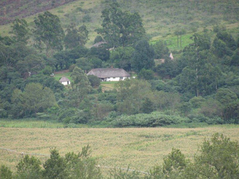 Dana's farm.jpg