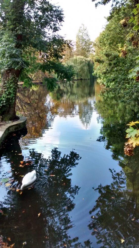 Lake at Worcester College.jpg