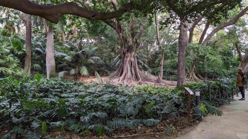 m jardin5.jpg