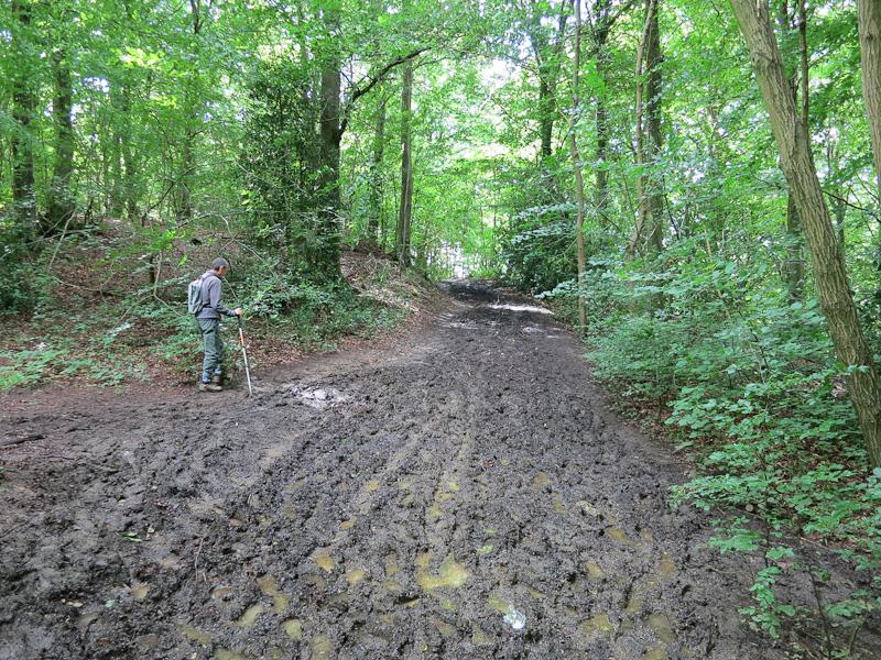 mud-july-1341.jpg