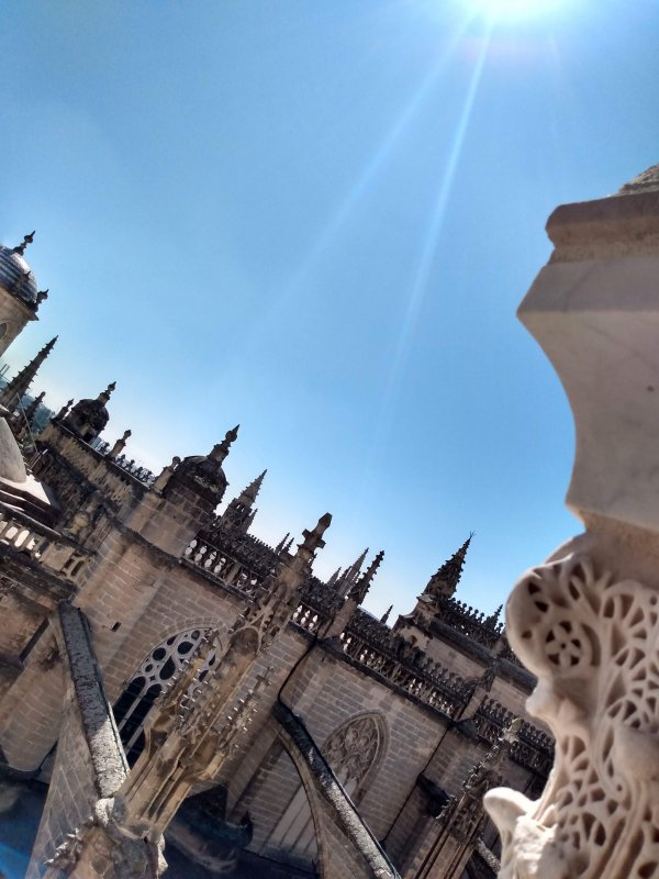 SevilleCathedralRoof.jpg