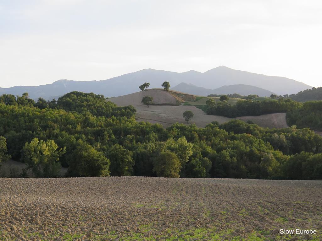 valle-nuova-0206.jpg