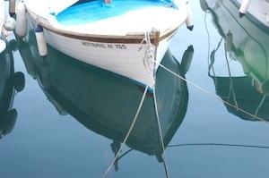 vjz-Boat_in_soft_water_HydraNN.jpg