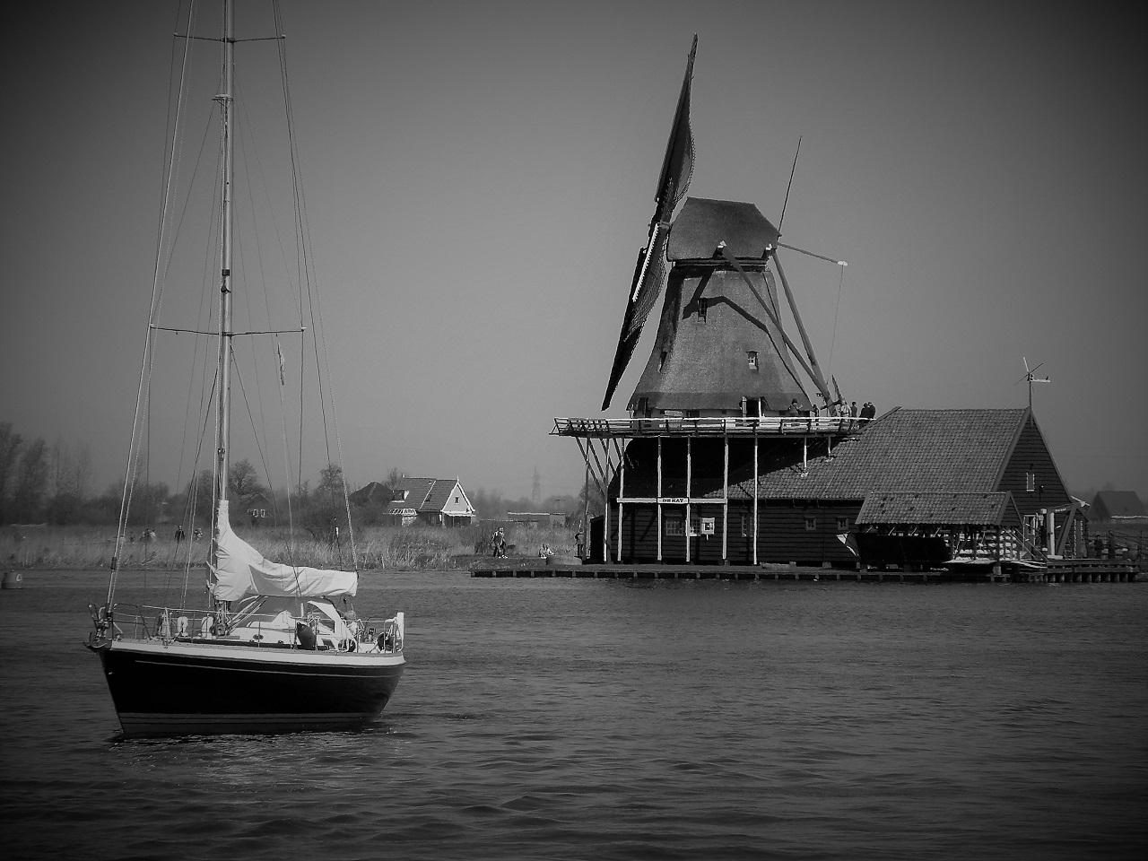Windmill City.jpg