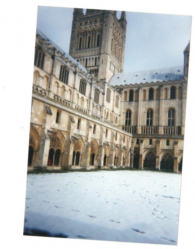 winter.jpeg (2).jpeg