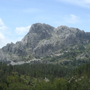 The Natural park of Grazalema