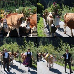Lenk Cow Parade