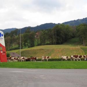 Rhone Alps - Samoens, French Alps