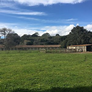 Residence and stables at La Purisima