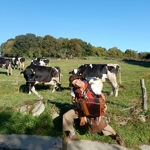 Photo Hunt No. 1-Happy Cows On The Camino