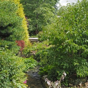 Harlow Carr Gardens