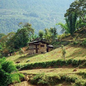 Farmhouse near Radi, Bhutan
