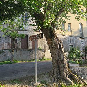 Lazio - Anagni