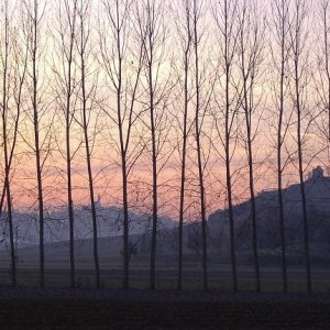 Dusk at Corsione, Monferrato