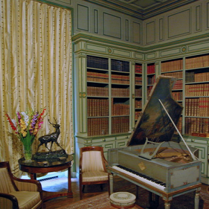 Château de Cheverny - library.png