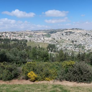 View from Haas Promenade in Talpiot