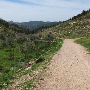 Walk from Ein Kerem