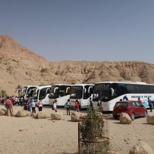 Buses at Wadi Arugot