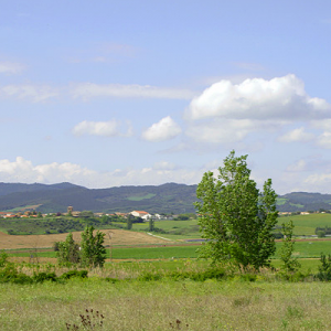Area around Santa Maria de Eunate