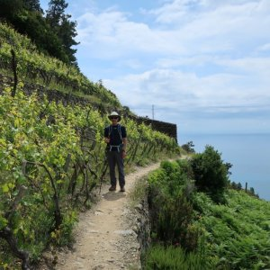 Hike the High Route from Corniglia to Manarola