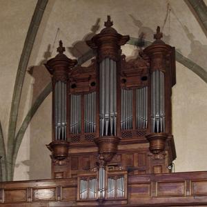 Rieux-Volvestre, Cathédrale Sante-Marie  - organ