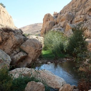 Ein Prat Nature Reserve - Wadi Kelt
