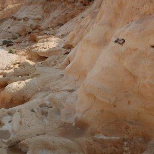 Wadi Barak Hike, Paran