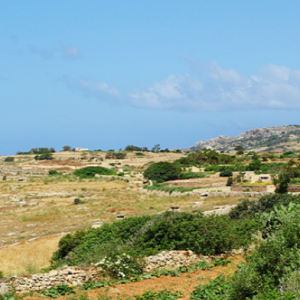 Scenery around Hagar Qim Temple