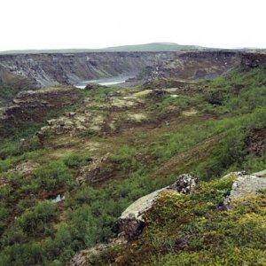 Jokulsargljufur canyon at Ásbyrgi