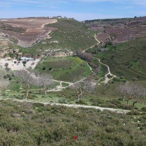 Hike from Jish