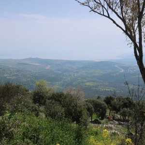View from Amirim
