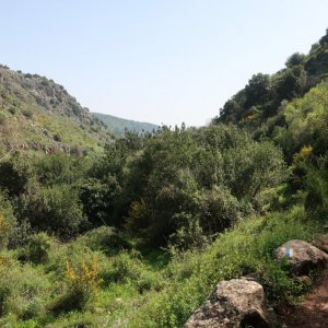 HIking in Nahal Amud