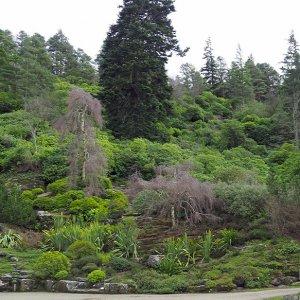 Cragside rock garden