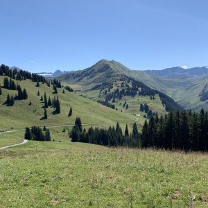 In the mountains above Lenk