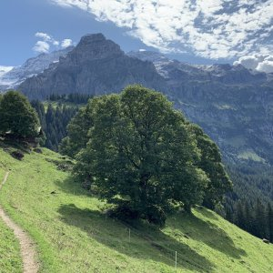 Hike Buhlberg to Simmenfalle