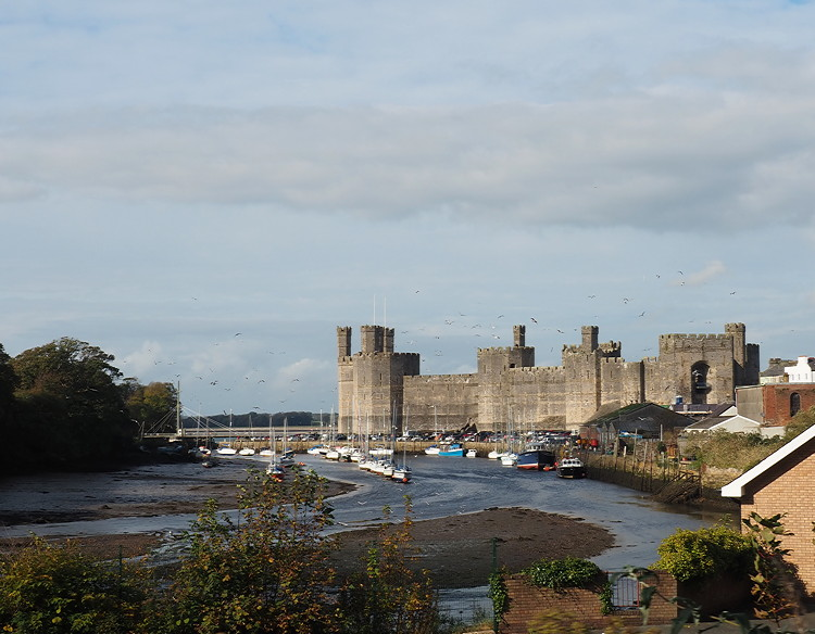 Caernarfon Castle, seen through the trees from the Welsh Highland Railway