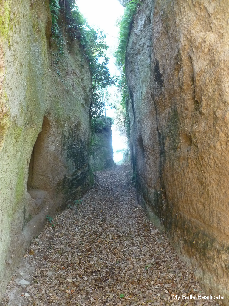 Pitigliano Etruscan Pathways